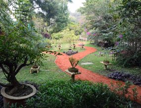 7 Parks and Gardens to visit