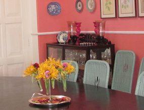 Darjeeling Tea Garden Stays & Tours
