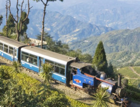 Delightful Darjeeling  – Part 2