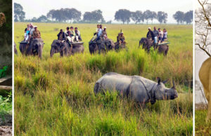 Kaziranga National Park, Assam, a World Heritage Site