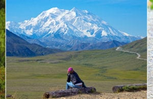 Close Encounters in Alaska's Denali National Park