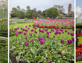 Kew Gardens – A Day In The Greens
