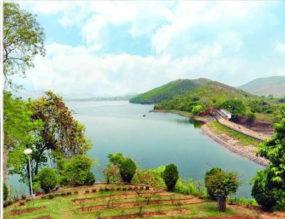 Jamshedpur Jacinth