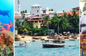 Contrasting Colors of Zanzibar